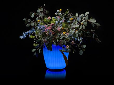Vorschau: JOOULS LED & Lautsprecher Sektkühler Blumenvase The Joouly Bowl