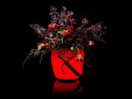 Vorschau: JOOULS LED & Lautsprecher Sektkühler Blumenvase The Joouly LTD