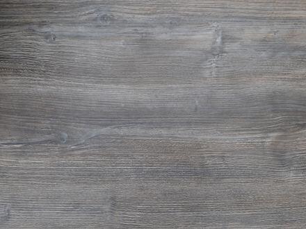 Stern Silverstar Tundra grau