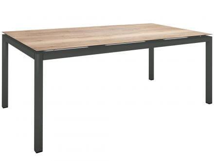 Stern Gartentisch 200x100cm Aluminium anthrazit/Silverstar Touch Tundra natur